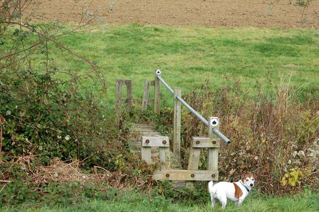 Footbridge over a small stream east of Northfields Farm