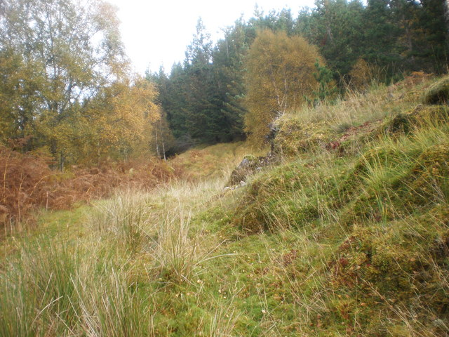 Path going to Coille Ghormaig