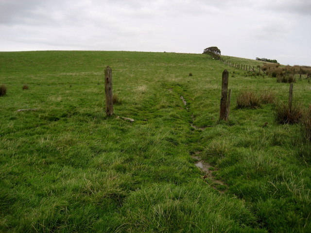 Pastures below Houghtons Farm