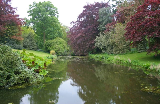 Lake, Harlsey Hall gardens