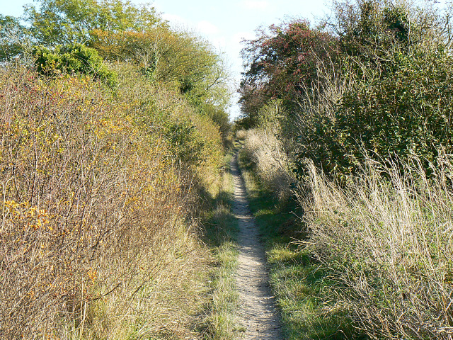 Byway to the Mid Wilts Way, Bromham CP