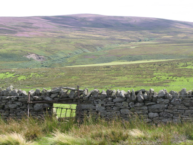 Sheephole near the track above Westburnhope