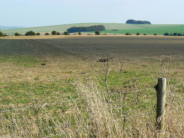 Field near the Mid Wilts Way, Bromham CP
