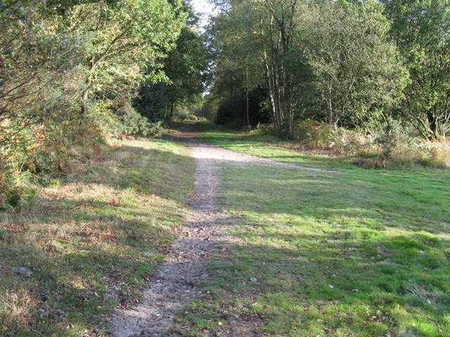 Junction of two paths on Access land adjacent to the A22