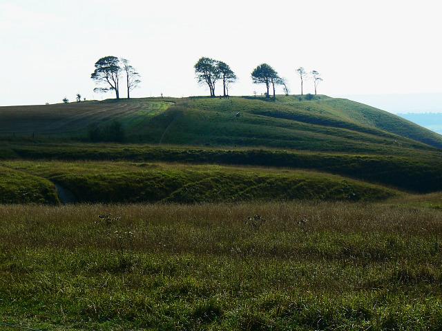 Beacon Hill access land, Bromham CP