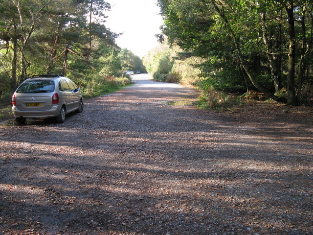 One of many car parks in the Ashdown Forest
