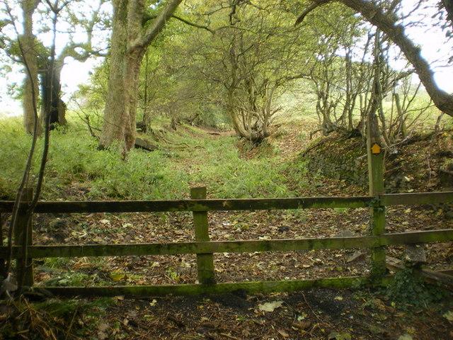 Footpath from Cragg Farm