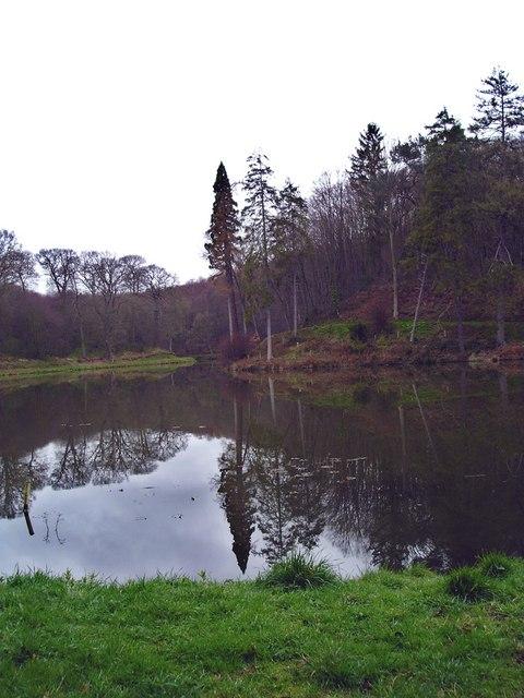 New Pool, Shrawley Wood