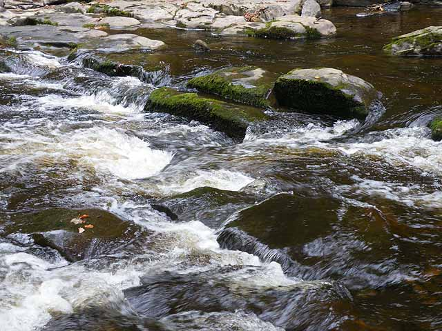 River Allen at Allen Banks