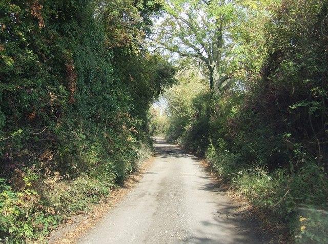 Teme Lane