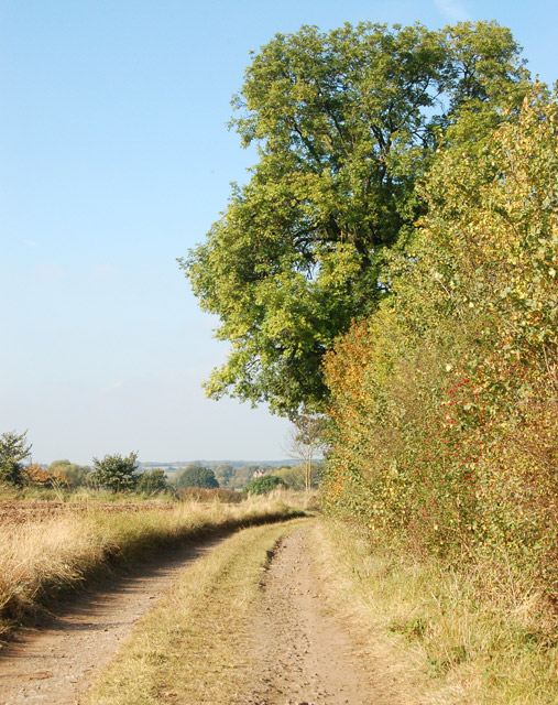 Unclassified road from Eathorpe to Hunningham (1)