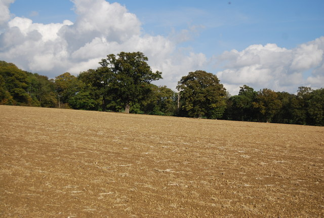 Looking east across a ploughed field, north of Lower Street