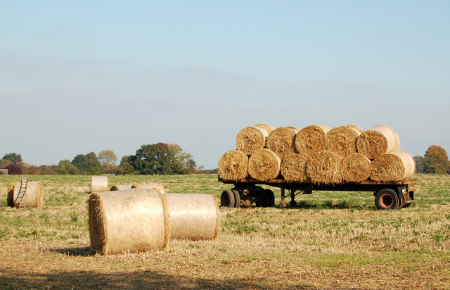 Bales south of hunningham