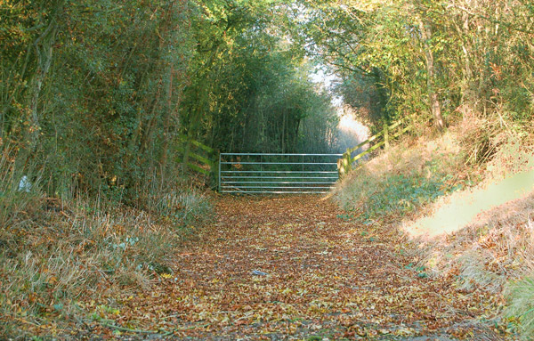 Gate on the track north of East Fields Farm