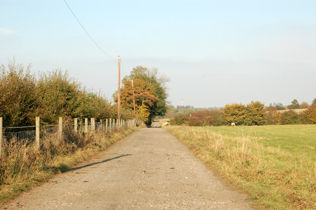 Looking north along the track to Stapenhall Farm