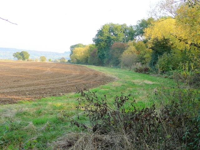 Footpath on a wide field margin