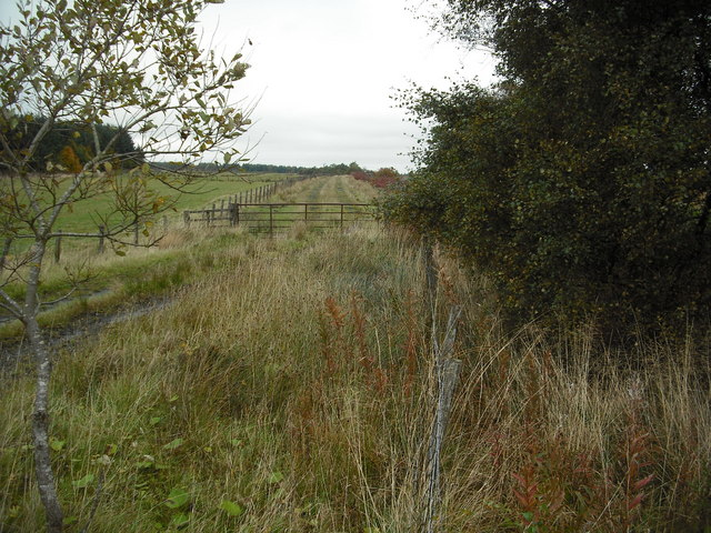 Farm track beside West Benhar Road