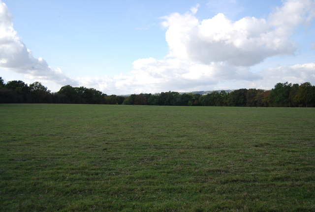 Large field near Home Farm, Nizel Lane