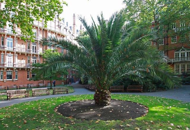 Mount Street Gardens, London W1