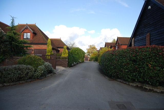 Bourne Place Meadow, Nizels Lane