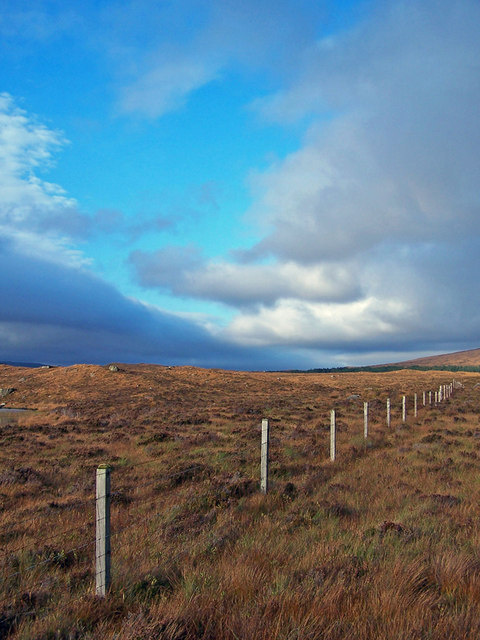 Fence on the moor