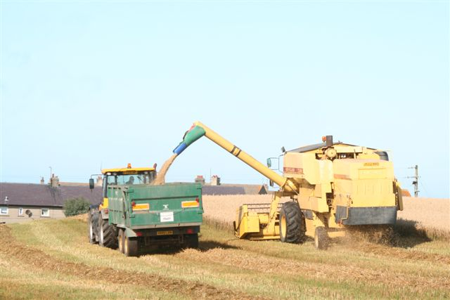 Crop of Oats being harvested at Slackend farm