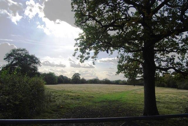 Field off Nizels Lane
