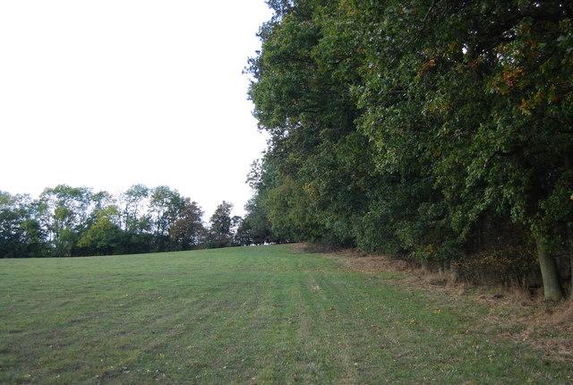 Footpath up Nizels Ridge