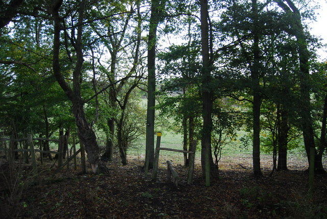 Stile in the trees, Nizels Ridge