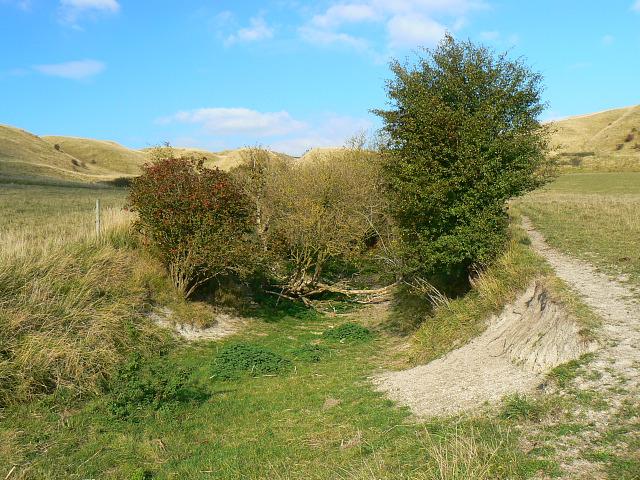 Earthwork, Beacon Hill, Bromham CP