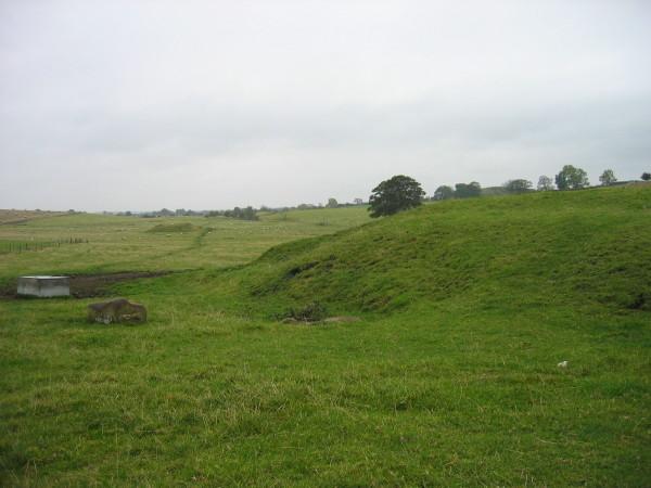 Field near Ryal