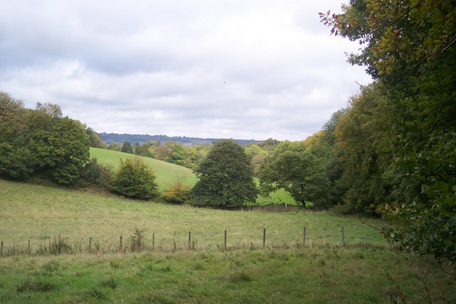 View of Valley near Chapman's Wood