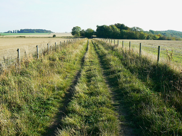 Bridleway to Roundway Hill Covert, Bromham CP