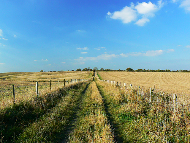 Bridleway to the Mid Wilts Way, Bromham CP