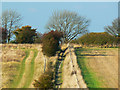 SU0065 : The Mid Wilts Way, near Heddington : Week 41