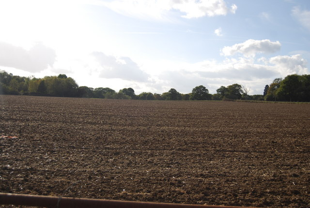 Large ploughed field west of Scabharbour Rd