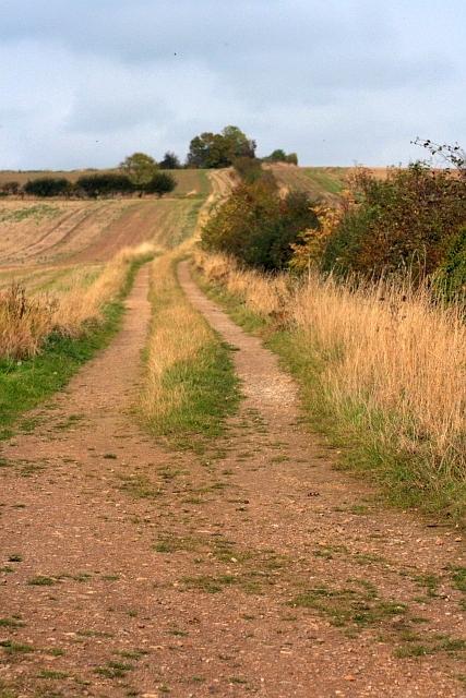 Track to Grindon Cottages