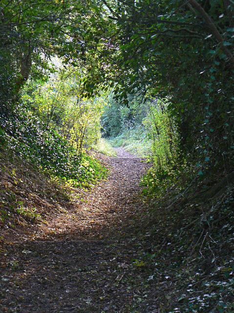 Path down Barker Hill