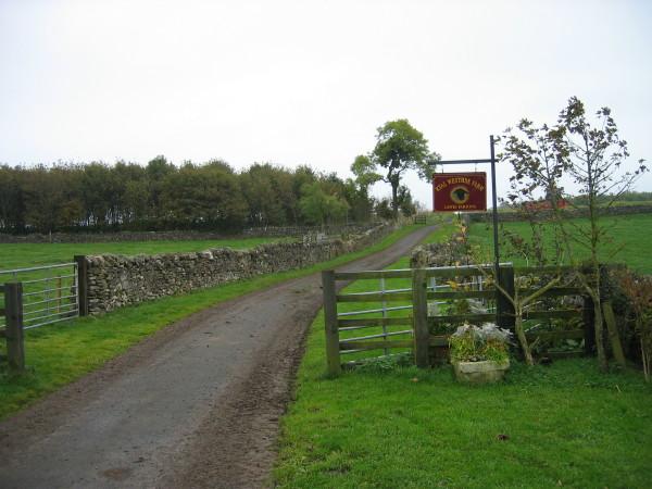 Road leading to West Side Farm, Ryal