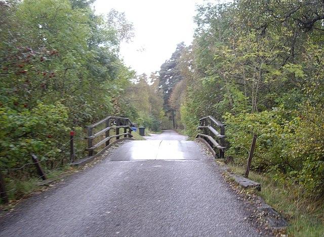 Hump-back bridge, Tomich