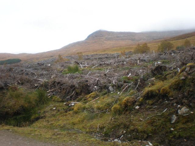 Beinn an Eòin from clear fell by Allt Bealach Odhar tributary