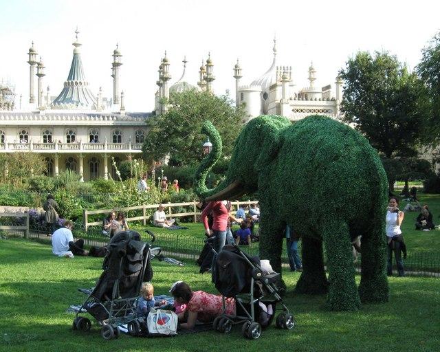 Elephant in Pavilion Gardens
