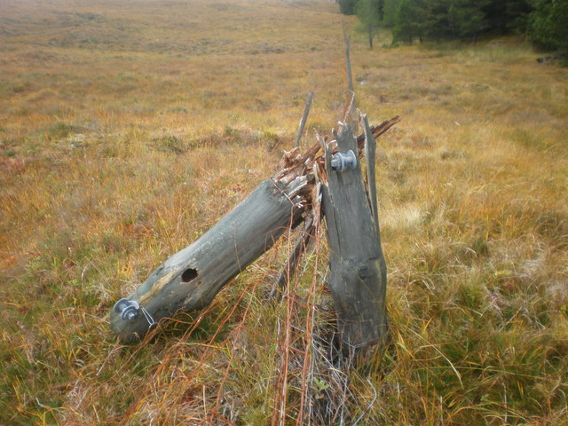 Broken  post on moorland / forest boundary fence
