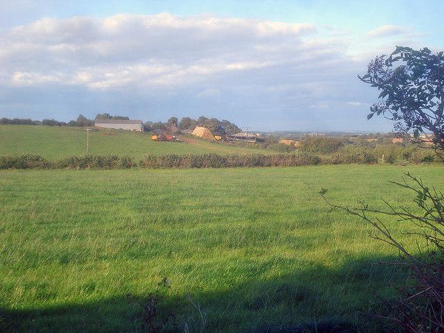 Meadows around Elms Farm