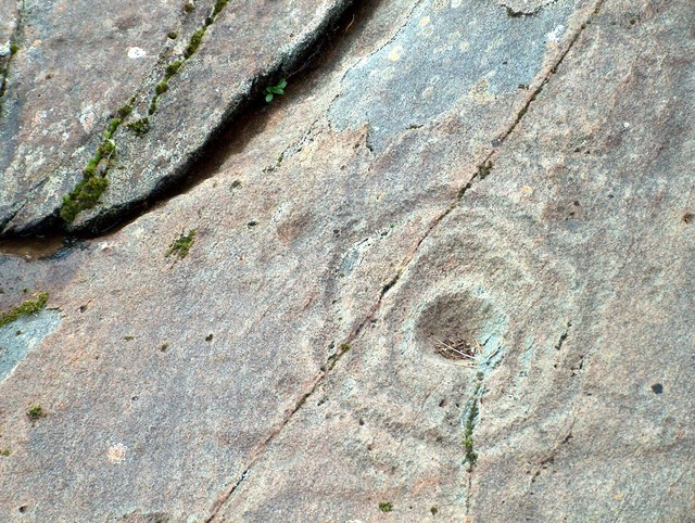 Cup and Ring marked stone at Achnabreck, Argyllshire