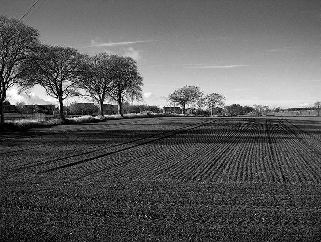 Ploughed fields near Winchburgh, West Lothian