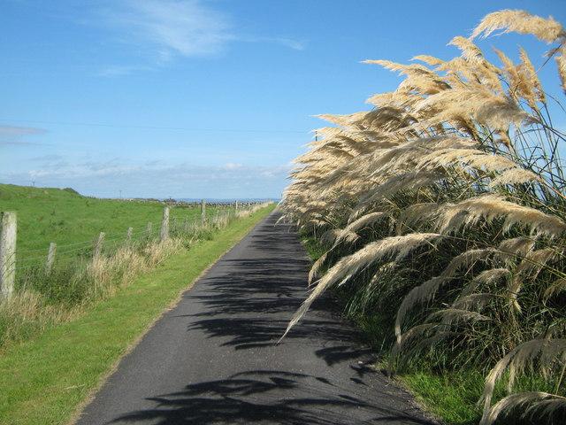 Farm track at Morrach