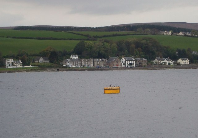 Yellow Jobbie in Rothesay Bay
