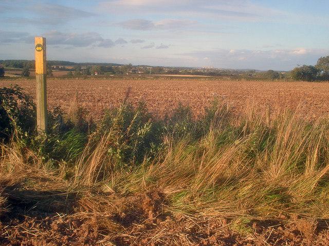 Path junction near Stordon Grange