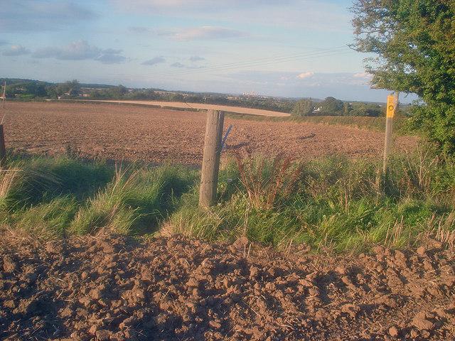 Public footpath near Storton Grange
